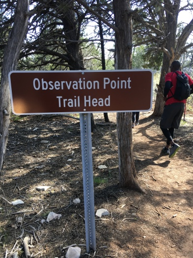 Observation Point Trailhead
