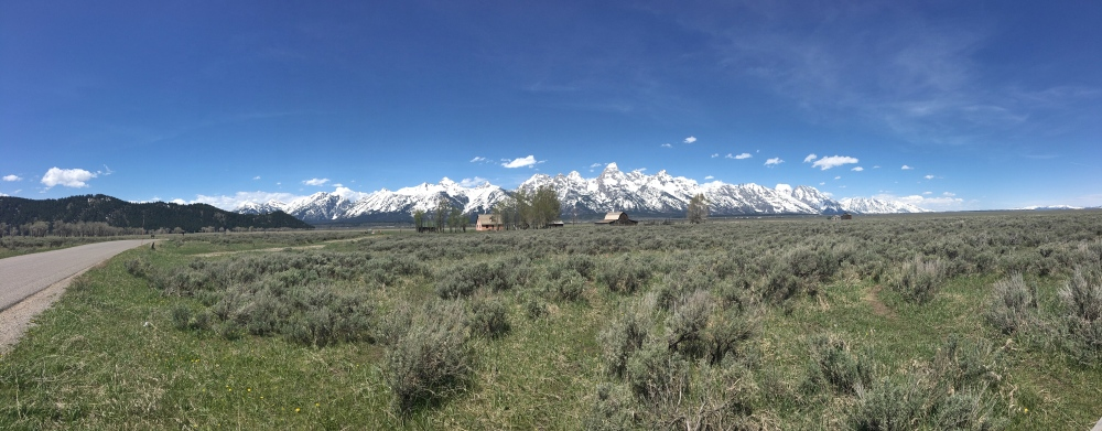 Mormon Row panorama