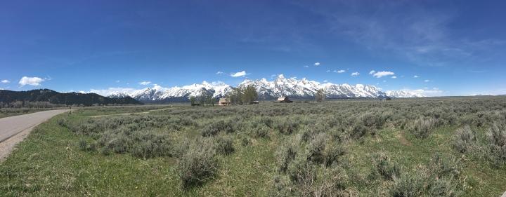 Mormon Row panorama