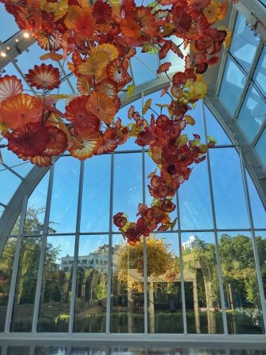 glass house garden view