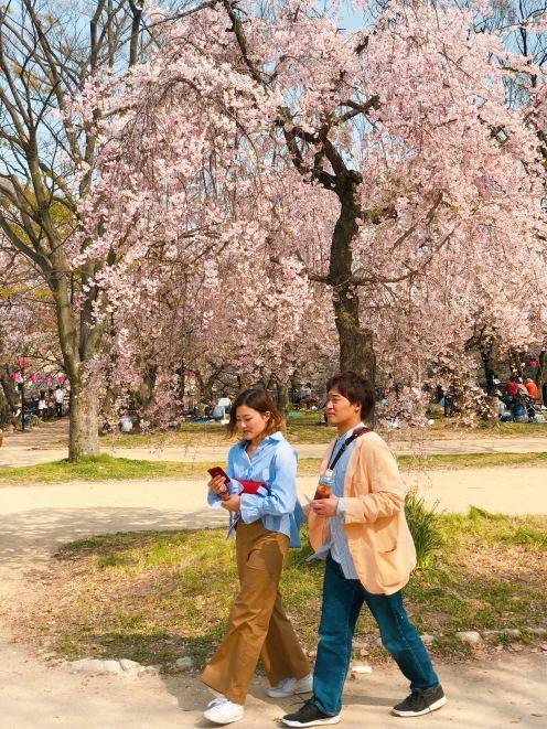Couple_Osaka Park